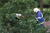 Na dráty spadlou dubovou větěv odstranili dobrovolníci z Chodové Plané.