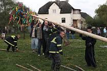 Dobrovolní hasiči vztyčili posledního dubna májku. V Chodové Plané tradičně na místě za hasičskou zbrojnicí.