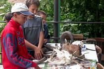 Myslivecké sdružení Tetřev Nedražice věnuje velkou pozornost také práci s mládeží.