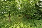 Výškovice na Tachovsku a jejich okolí...