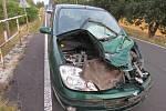 Nehoda vozidla s býkem.