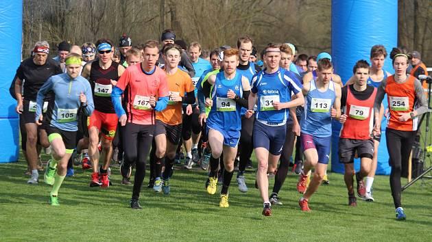 START HLAVNÍ KATEGORIE MUŽŮ A JUNIORŮ. Adam Matulka z Baníku Stříbro běží zcela vpravo s číslem 254.