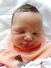 Mamince Lence a tatínkovi Pavlovi se narodila 14. prosince v 16:34 Elen Černá. Po porodu vážila sestra dvouletého Pavlíka z Broumova 3550 gramů a měřila 49 cm.