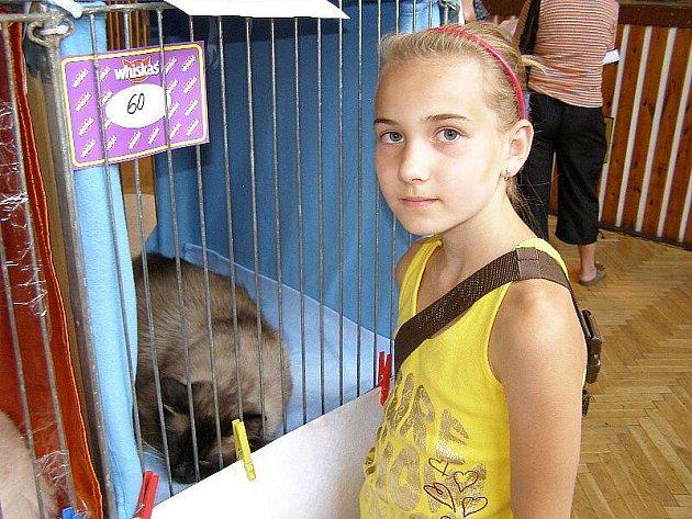Výstava koček ve Stříbře.