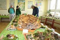 Mykologickou výstavu uspořádalo gymnázium v Tachově. Návštěvníci mohli vidět přes 180 druhů vystavených hub a také vzácného korálovce. Vzhledem ke změnám klimatu se pak mění také složení hub v lese, více v našich lesích houbaři nalézají houby, které dříve