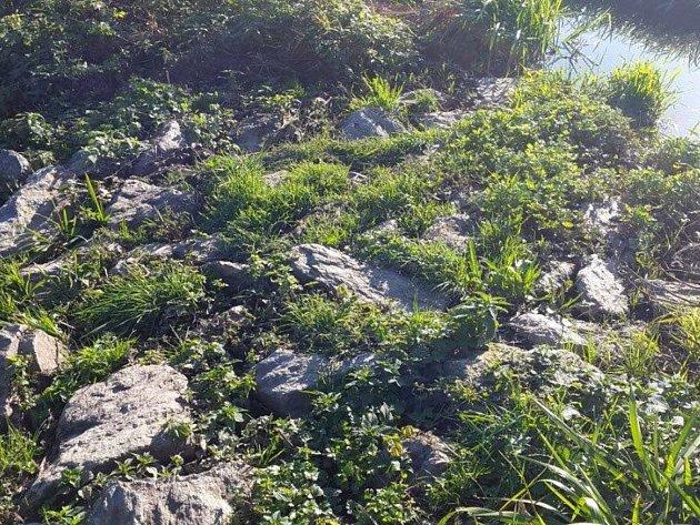 Výrovský potok a jeho okolí vypadá v dnešních dnech tak, jak by mělo.