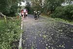 Odstranění padlého stromu z vozovky...
