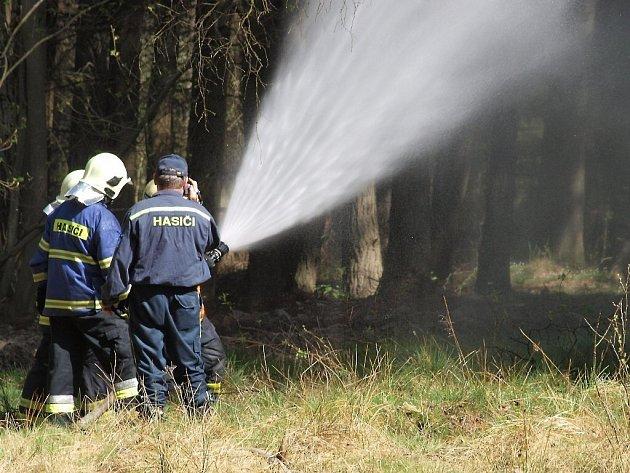 Devět hasičských jednotek zdolávalo požár lesa nedaleko Labutě.