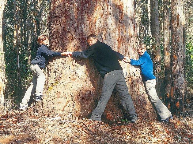 Šimánkovi v Austrálii