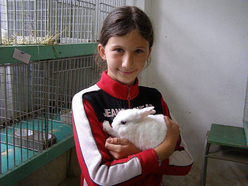 Deset chovatelů vystavilo svá zvířata
