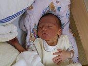 Matěj Pánek se narodil Kristýně Pánkové z Povrlů 1. srpna v 22.58 hod. v ústecké porodnici. Měřil 49 cm a vážila 3,52 kg.