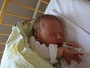 Kamila Breciková se narodila Petře Brecikové z Ústí nad Labem 7. srpna v 16.55 hod. v ústecké porodnici. Měřila 50 cm a vážila 3,53 kg.