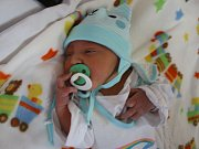 Dominik Olešnanik se narodil Janě Olešnanikové z Ústí nad Labem 22. srpna v 8.13 hod. v ústecké porodnici. Měřil 50 cm a vážil 3.1 kg.