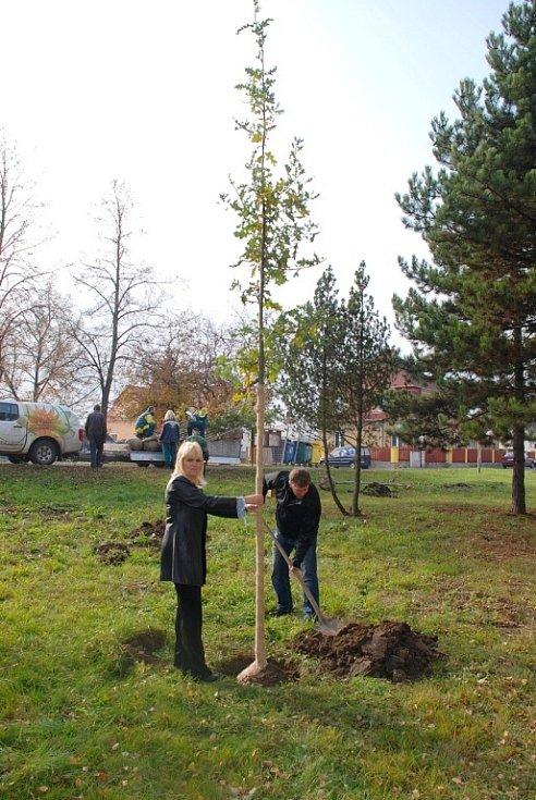 Nová zeleň oživila i parčík ve městě Ledvice.