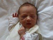 Stella Popelková se narodilav ústecké porodnici 21.6. 2017(23.18) Michaele Popelkové. Měřila 48 cm, vážila 2,77 kg.