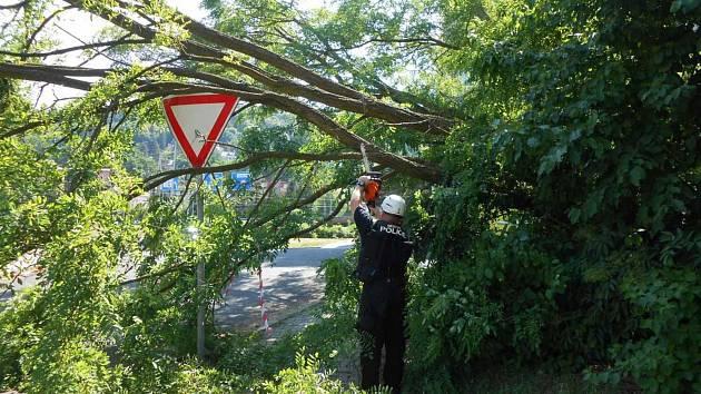 Strážníci vyvrácené stromy pořezali.