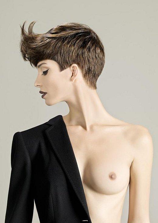 Variace z kolekce Jany Burdové nominované na Hairdressing Awards ČR a SR 2011, kategorie Avantgarda a Dámský komerční účes. Účesová tvorba: Jana Burdová .