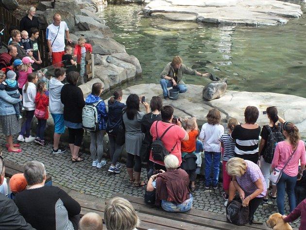 Zoo Ústí nad Labem. Ilustrační foto.