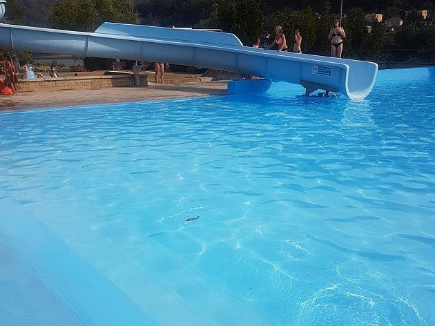 Na koupališti v Brné se opět někdo vykálel do bazénu.