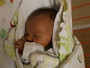 Jan Novotný se narodil v ústecké porodnici 7.2.2017(21.01) Šárce Novotné. Měřil 49 cm, vážil 3,05 kg.