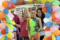 Pětadvacátého ročníku Ústeckého poháru se zúčastnilo 126 gymnastek.
