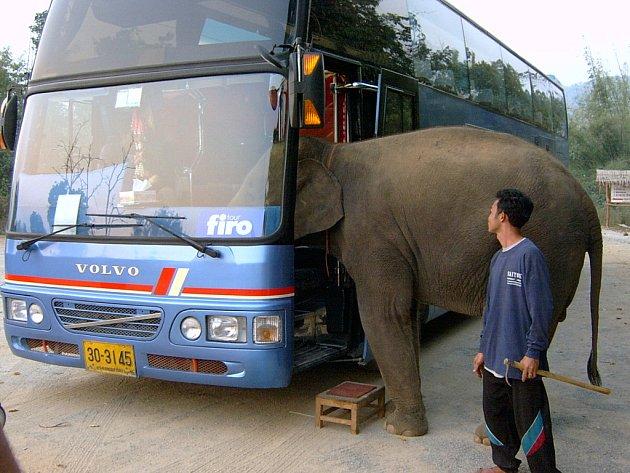 Česká cestovní kancelář přibrala v Thajsku cestujícího. Snímek poslal Pavel Starý z Úštěku.