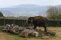 Zoo Ústí nad Labem.