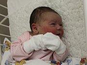 Anna Novosadová se narodila v ústecké porodnici 9.11.2016 (19.28) Janě Amešné. Měřila 50 cm, vážila 3,33 kg.