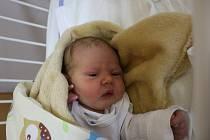 Emily Vorlová se narodila Petře Vorlové a Karlu Vorlovi z Teplic 25. září v 8.13 hod. v ústecké porodnici. Měřila 47 cm a vážila 2,91 kg.