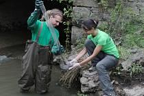 VZORKY VODY Z LABE A BÍLINY na Ústecku odebrali v pátek lidé z neziskové organizace Arnika, která se zabývá ochranou životního prostředí.