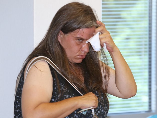 Ukrajského soudu vÚstí nad Labem vpondělí začal proces sJiřinou Sládkovou (1981) zBlšan.