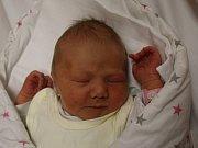Adélka Macánková se narodila v ústecké porodnici 5.7. 2017(8.05) Michaele Bláhové. Měřila 49 cm, vážila 3,23 kg.