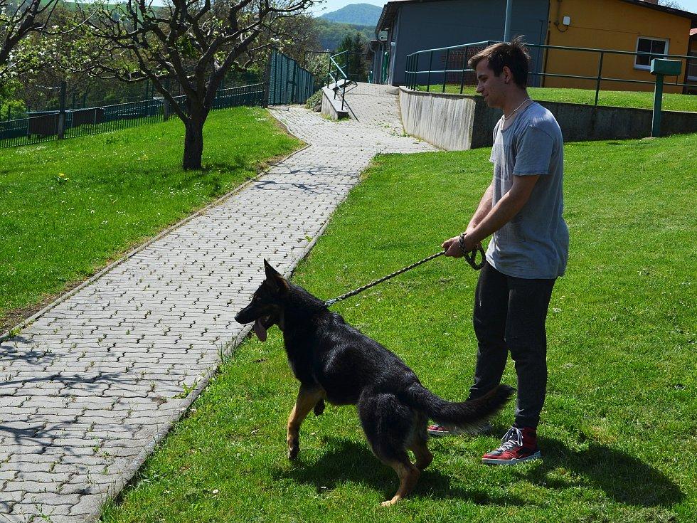 Chovatelská stanice služebních psů Policie ČR v Prackovicích nad Labem.