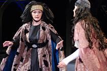 Regina Razovová, která bude ve Velkém Březně ve středu recitovat, hraje v Městském divadle v Mostě v muzikálu Noc na Karlštejně. Nejbližší repríza čeká publikum 2. října od 19.00.