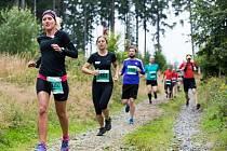 Ústecká maratonská běžkyně Zuzana Hofová v čele peleotonu.
