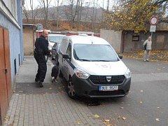 Ošiřelí psi bez paničky skončili po zásahu strážníků v útulku.