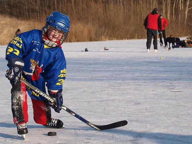 Několik desítek malých i větších Jágrů předvádělo své hokejové kreace na ledové ploše uprostřed, po obvodu kroužily talentované rychlobruslařky, u břehu postávaly krásné krasobruslařky.