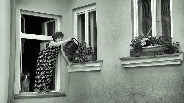 Učitelka Lenka Krejčová zÚstí nad Labem měla svou první výstavu vmuzeu před čtyřmi roky, dnes její fotka nazvaná Babka vokně zdobí galerii vJaponsku.