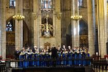 Chorea Academica, na snímku zpívá v katedrále sv. Eulálie v Barceloně.