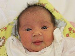 Jenifer Olešnaniková se narodila v ústecké porodnici 11.4.2015 (5.45) mamince Janě Olešnanikové. Měřila 48 cm, vážila 2,82 kg.