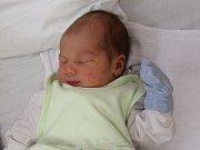Martin Zvoneček se narodil Marcele Kanisové z Ústí nad Labem 7. října v 18.35 hod. Měřil 51 cm, vážil 3,62 kg