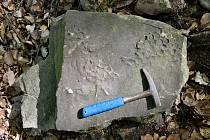 Vzácný objev z doby druhohor pochází od Těchlovic.