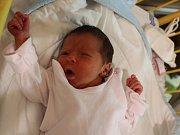 Victoria Vajnerová se narodila v ústecké porodnici 20.11.2016 (5.03) Kamile Vajnerové. Měřila 45 cm, vážila 2,53 kg.