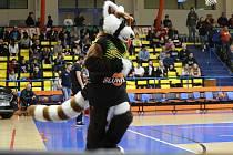 Maskot ústeckých basketbalistů Sunny