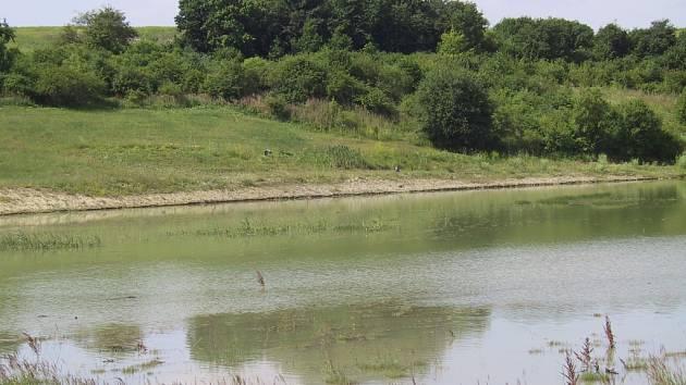 Tady se těžilo uhlí? To by asi nikdo z vás nehádal. Záchytná nádrž na dešťovou vodu na jižním okraji výsypky u Razic. Na protějším břehu při podrobnějším zkoumání snímku odhalíte volavky.