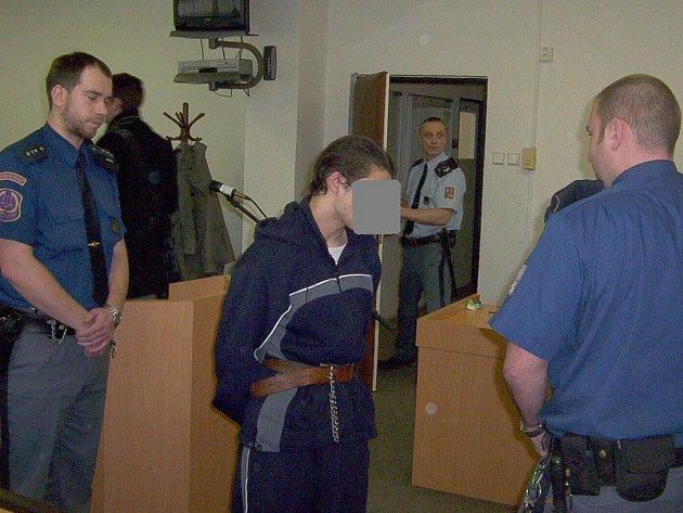 Sedmnáctiletý mladík dostal za brutální zmlácení, znásilnění a lynčování dvanáctiletého Patrika deset let vězení.