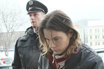 Na matku, která zabila v Lovosicích novorozeně, byla uvalena vazba.