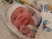 Dominika Toušová se narodila v ústecké porodnici 15.11.2016 (22.46) Dagmar Pekařové. Měřila 49 cm, vážila 3,62 kg.