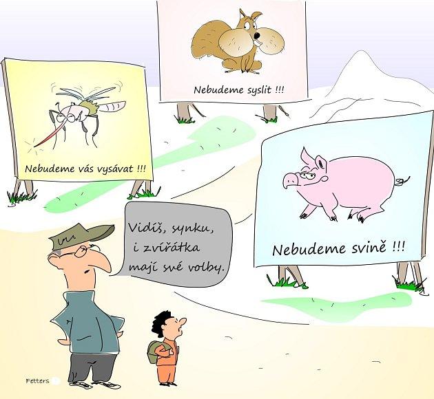 Takto vidí volební situaci ústecký karikaturista Radek Fetters.