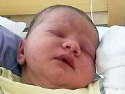Adéla Vavřincová  se narodila 13.4.2017 (17:32) Pavlíně Krausové v ústecké porodnici. Vážila 3570 g a měřila 51 cm.